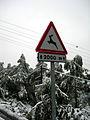 Neu a Collserola (II).JPG