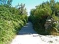 New Lane - geograph.org.uk - 934448.jpg