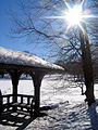 New York. Central Park. Snowy (2797829722).jpg