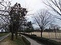 Nishiashihara, Tateyama, Nakaniikawa District, Toyama Prefecture 930-0224, Japan - panoramio (1).jpg