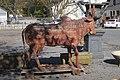 No Bull, Saratoga Springs NY (10564697464).jpg