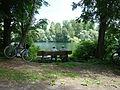No nicer place -Ketscherhein Insel.JPG