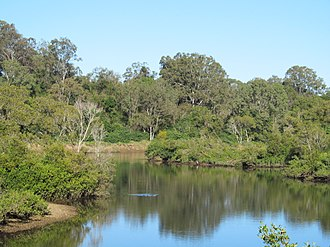 North Pine River - The river at Petrie, 2016