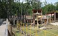 Nyíregyháza Zoo, giraffe-3.jpg