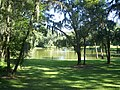 Ocala Hist Dist - pond on 11th Ave01.jpg