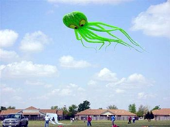 English: Octopus kite at the Clovis, New Mexic...