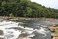 Ohiopyle State Park - panoramio (17).jpg