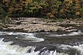 Ohiopyle fall colors - panoramio (3).jpg