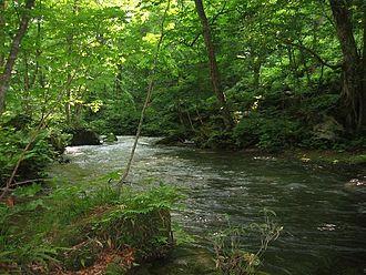Towada, Aomori - Oirase Valley in Towada