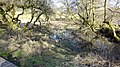 Old site of retting pond, Sorn, East Ayrshire.jpg