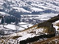 One of the Great Walls of Yorkshire - geograph.org.uk - 1727757.jpg