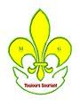 Organisation internationale des Amicales du Scoutisme large.jpg