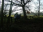 Over and Out As the winter sunlight fails, these walkers climb the stile out of South Wood, near Heath End.