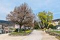 Pörtschach Halbinsel Johannes-Brahms-Promenade Blumenstrand 09042019 6407.jpg