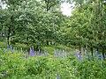 Přírodní park Baba897.jpg