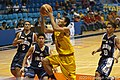 PCCL 2010 Quarterfinals- Adamson Falcons vs. FEU Tamaraws, Nov. 29, 2010-007.jpg