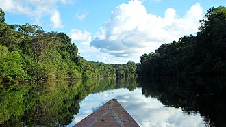 Pacaya-Samiria National Reserve - River at Pacaya-Samiria National Reserve.