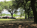 Palmer Park Art Fair Across Carrollton.jpg