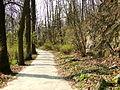 Park Bednarskiego II.jpg