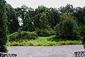 Park przy pałacu w Osieku - widok od głównego wejścia.JPG