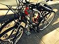 Parked bikes.jpg
