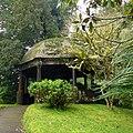 Parque Terra Nostra, Furnas, S. Miguel, Açores,Portugal - panoramio (19).jpg
