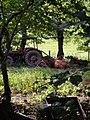 Pastoral at Combebow - geograph.org.uk - 249960.jpg