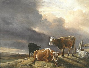 Cows and Sheep in a Meadow