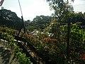Penang Hill, Malaysia (34).jpg