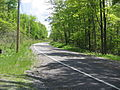 Pennsylvania Route 504.jpg