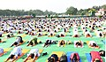 People participating in the rehearsal ahead of the Prime Minister's event on the International Day of Yoga 2018, at the Forest Research Institute, in Dehradun, Uttarakhand on June 19, 2018 (4).JPG