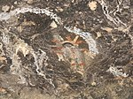 Pictographs 11-15-10 (43693003742).jpg