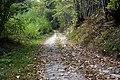 Piegut-voie-romaine 04.jpg
