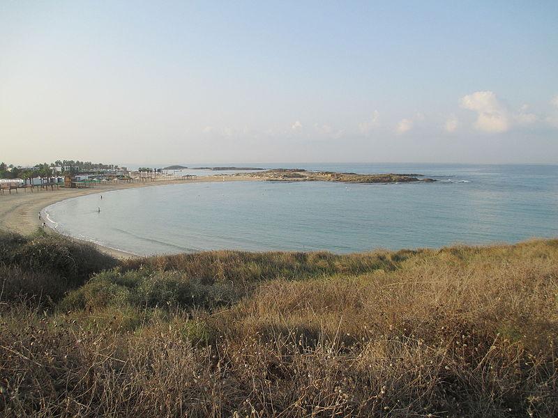 חוף נחשולים - דור