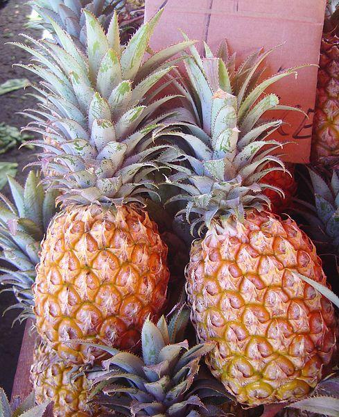 Datei:Pineapple victoria dsc07770.jpg