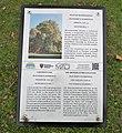 Platan Dobrzyca plaque.jpg