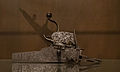 Platine rouet 1570.jpg