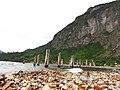 Playa Huequecura - panoramio.jpg