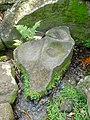 Polissoir de la rivière du Petit Carbet 01.jpg