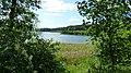 Polska - Jezioro Sępoleńskie - panoramio.jpg