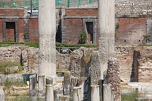 Macellum of Pozzuoli - View across the marketplace to two of the columns, showing the bands of mollusc holes.