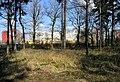 Prague Kunraticky Forest E 3.jpg