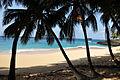 Praia Boi.jpg