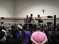 Professional wrestling body slams the adoring crowd (5134037977).jpg