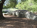 Public art - Phytosaur, Kings Park Perth.jpg
