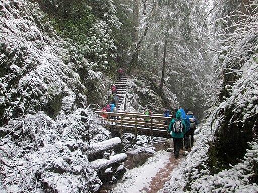 Puck's Glen winter at bridge and steps