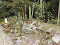 Quitos botaniska trädgård-IMG 8807.JPG