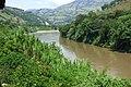 Río Cauca - La Felisa - Flickr - Alejandro Bayer (1).jpg