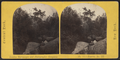Ramble, No. 3, from Robert N. Dennis collection of stereoscopic views.png