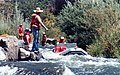 Raney falls fish ladder looking for a ride (LJ) - panoramio.jpg